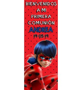 Banner comunion Lady Bug